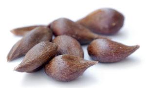 دانه های میوه