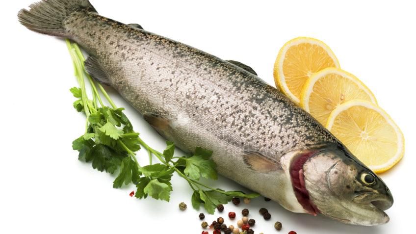8 مورد از خواص بی نظیر ماهی که باید حتما بدانید