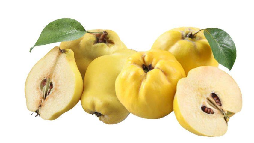 آشنایی با خواص به ، یکی از خوشمزه ترین میوه های پاییزی