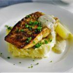 خوراک ماهی ایران غذالند سرزمین غذا