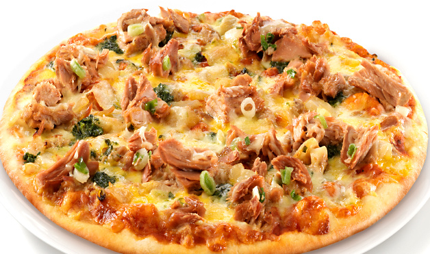 پیتزا ماهی تن آلمان غذالند سرزمین غذا
