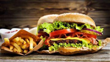 همبرگر مخصوص امریکا غذالند سرزمین غذا