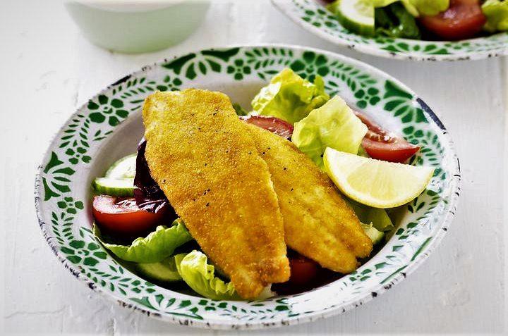 شنیسل ماهی مجارستان غذالند سرزمین غذا