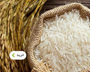 خرید برنج هاشمی و برنج قهوه ای - غذالند