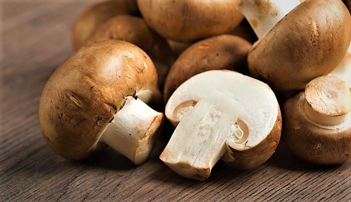 خواص قارچ